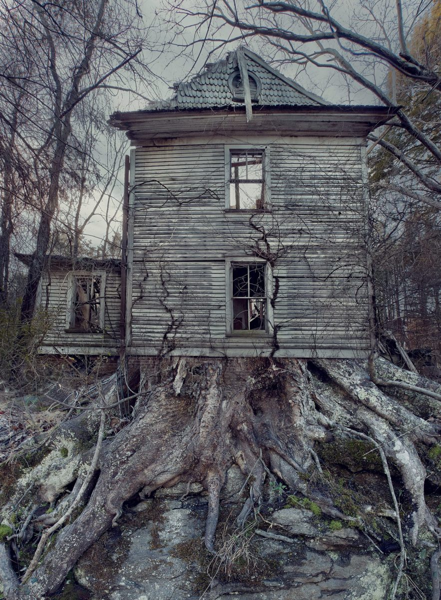 An old home taken over by roots. Maintenance needed - Support the show.